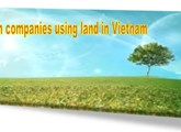 Foreign companies using land in Vietnam